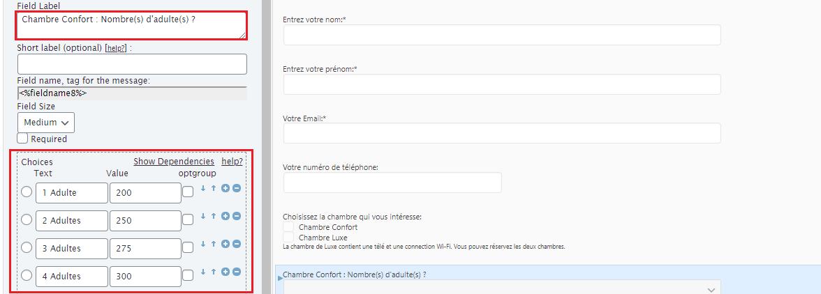 Créer un formulaire dynamique sur WordPress 30