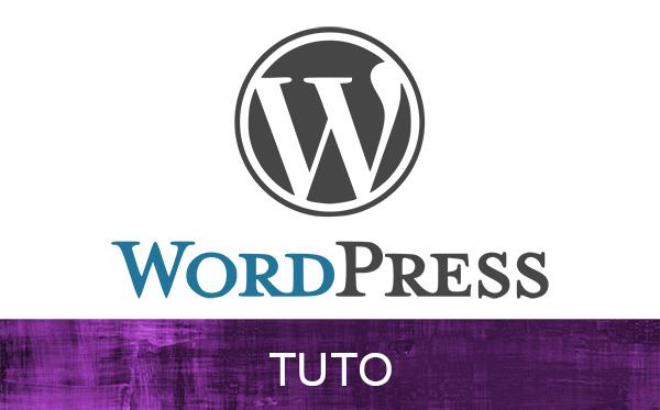Comment insérer un iframe dans WordPress