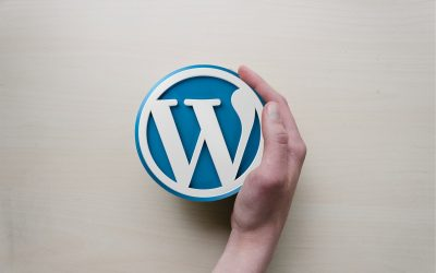 WordPress 55 :  obtenez des mises à jour automatiques pour les plugins et les thèmes