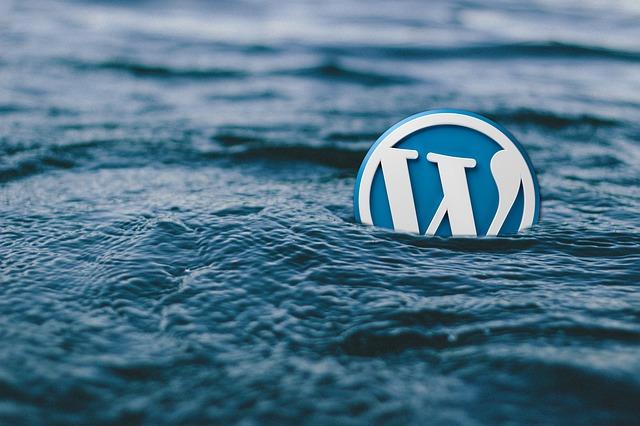 WordPress logo on water